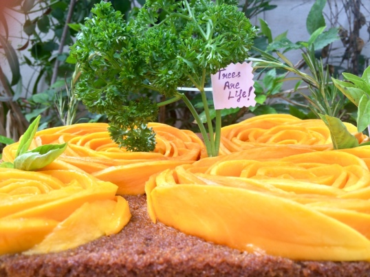 Taantraa Multigrain Mango Cake with Mango Topping